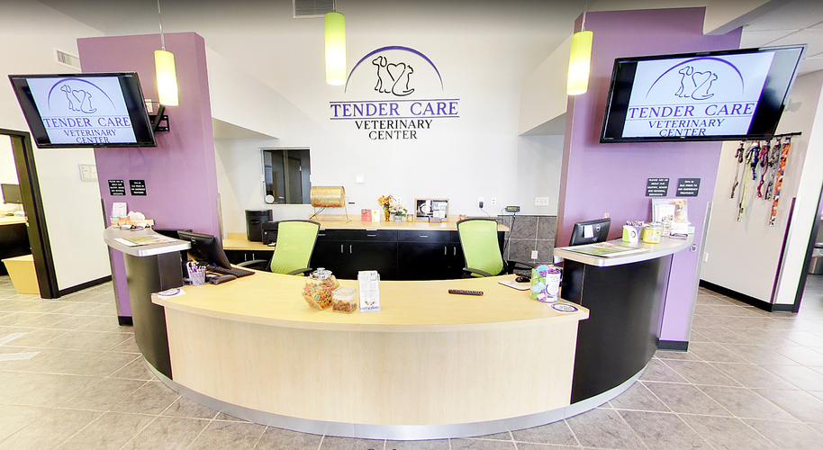 Tender Care Vet